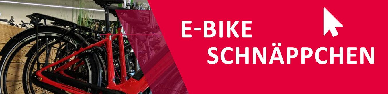 Schnäppchen e-motion e-Bike Welt Hombrechtikon