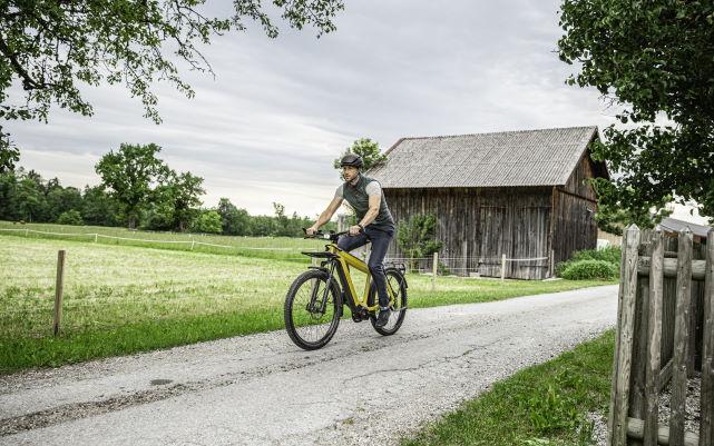Trekking e-Bikes 2020