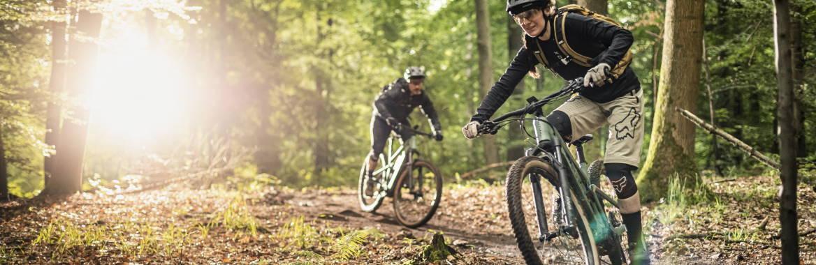 e-Bikes 2020 im Online-Shop von e-motion reservieren