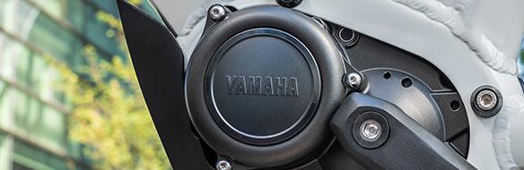 Yamaha PWseries CE